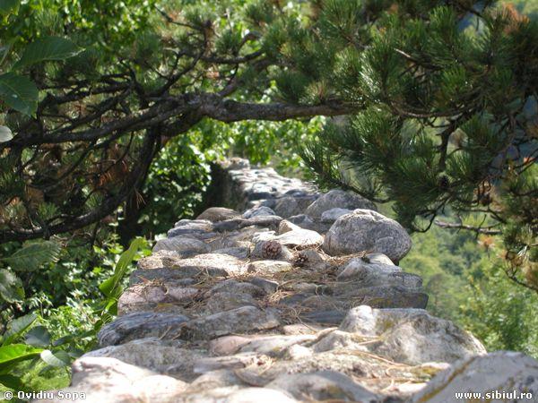 Zidul Cetatii